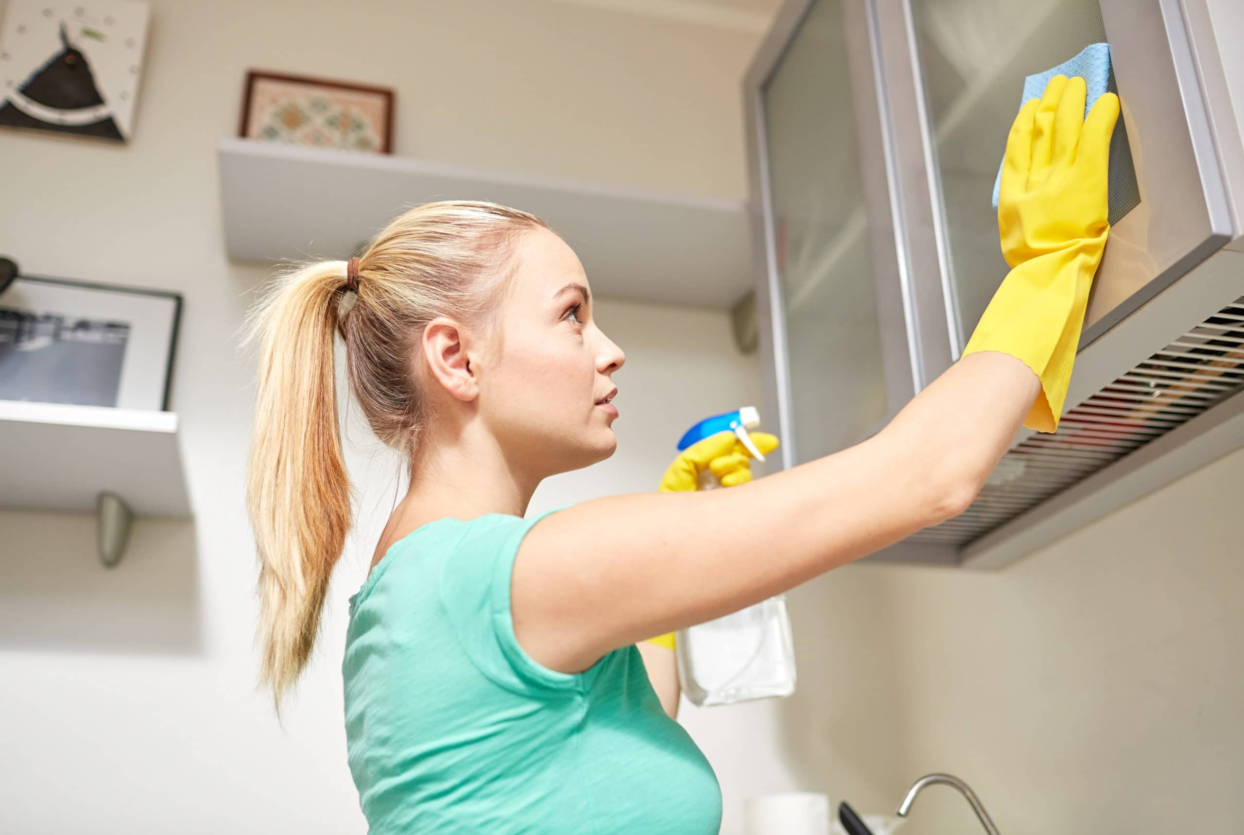 what will a house cleaner do 2
